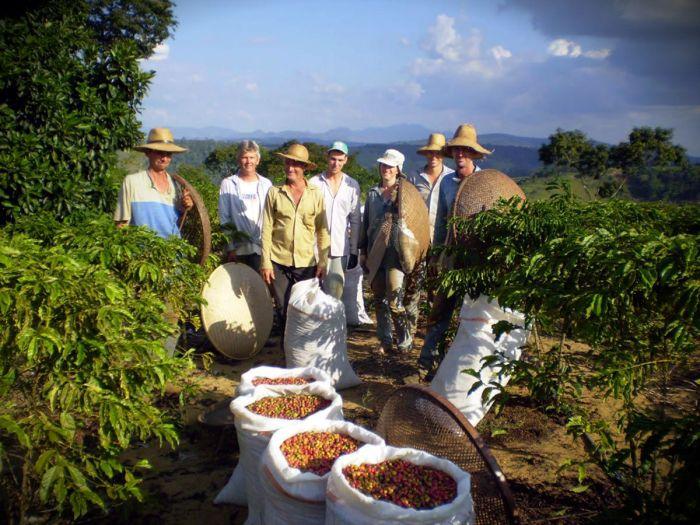 Agricultura familiar brasileira