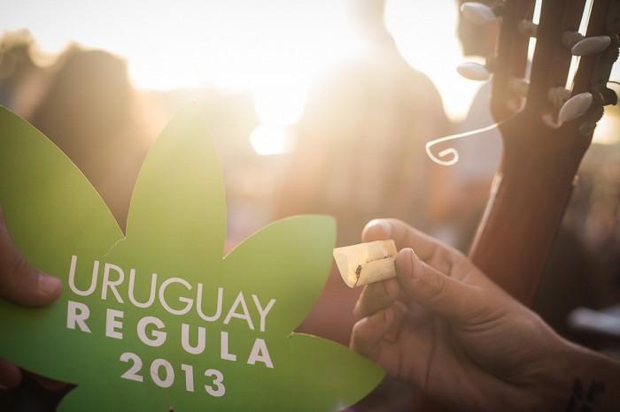 """""""A verdade é que eu queria fazer política no Uruguai, que você atravessa o país de carro em meio dia. No Brasil, é mais complexo; temos um eleitorado de 140 milhões de pessoas e não é simples pensar em um sistema de consulta que não seja meramente formal."""" (Foto: Mídia NINJA)"""